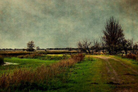 Cloudy Day by AnnieSnel