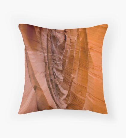 Zebra Slot Throw Pillow