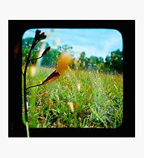 InsideOut Photographic Print