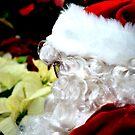 Santa Contemplating by Jennifer Vickers