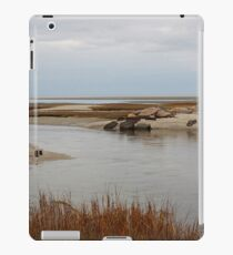 Marsh and tidal flats on Cape Cod Bay iPad Case/Skin