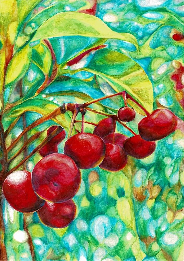 Red Berries by Skye  Riseley