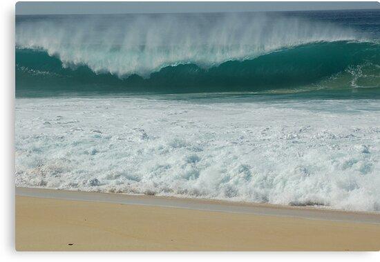 Hawaiian Shore Break  by Ernie Lopez