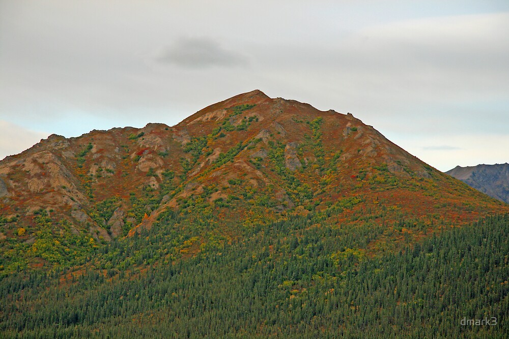 Forest and Mountain by dmark3