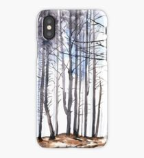 The colour of Winter is in the imagination iPhone Case