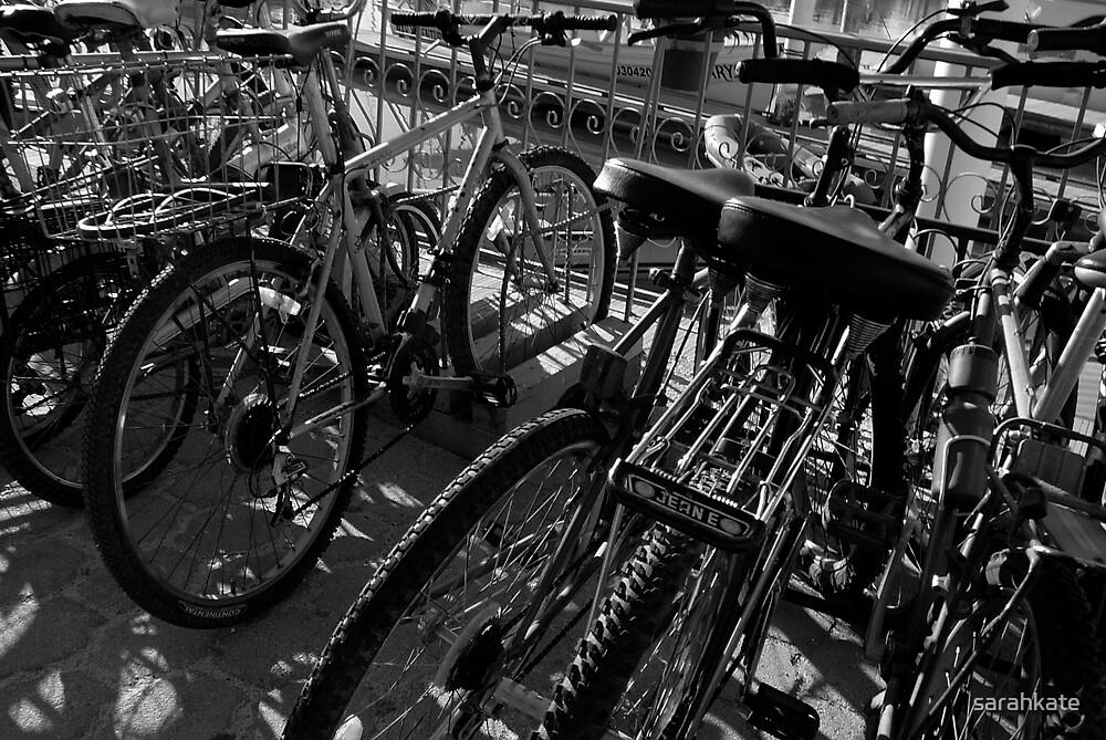 Bicycle Rack by sarahkate