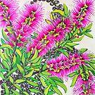 Callistemon by marlene veronique holdsworth