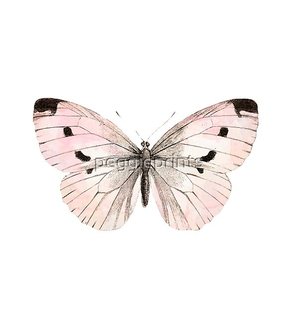 Butterfly flutter - soft peach by peggieprints