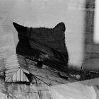 Cat's Dream by monicamarcov