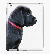 Vinilo o funda para iPad Cachorro labrador negro