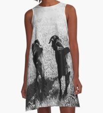 Friends - Black Labrador A-Line Dress