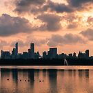 Pink Sunset Over Manhattan by Mark Greenwood