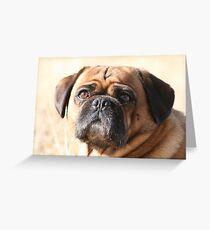 Puggy Greeting Card