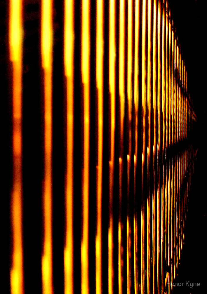 Golden Lines by Honor Kyne