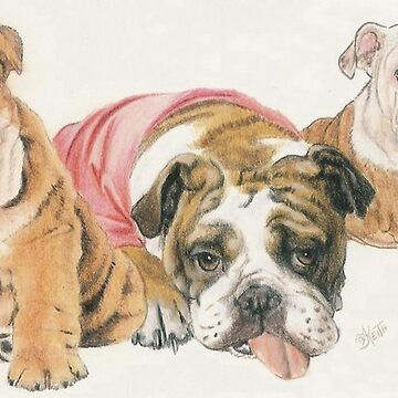 Bulldog Puppies by BarbBarcikKeith