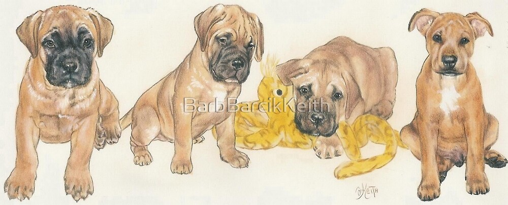 Bullmastiff Puppies by BarbBarcikKeith
