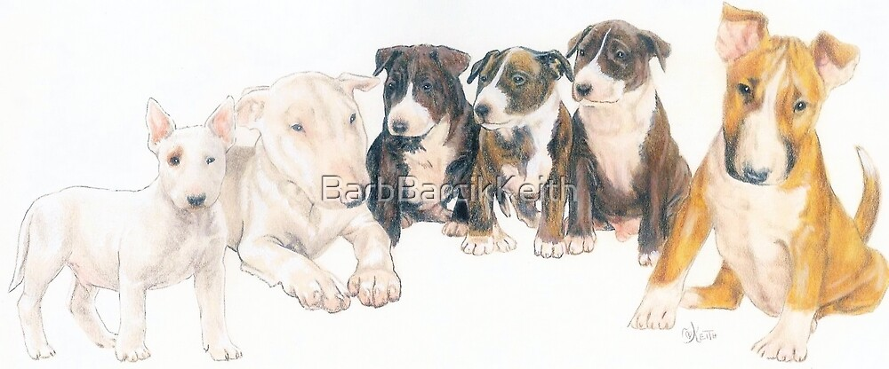 Bull Terrier Puppies by BarbBarcikKeith
