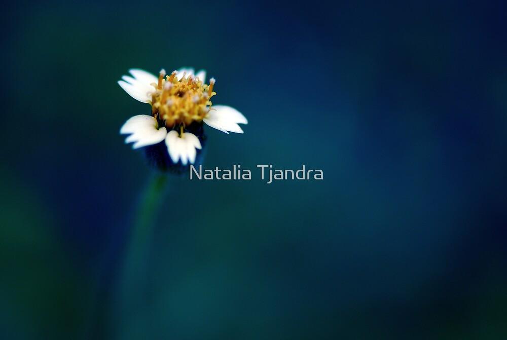 fairytale story.. by Natalia Tjandra