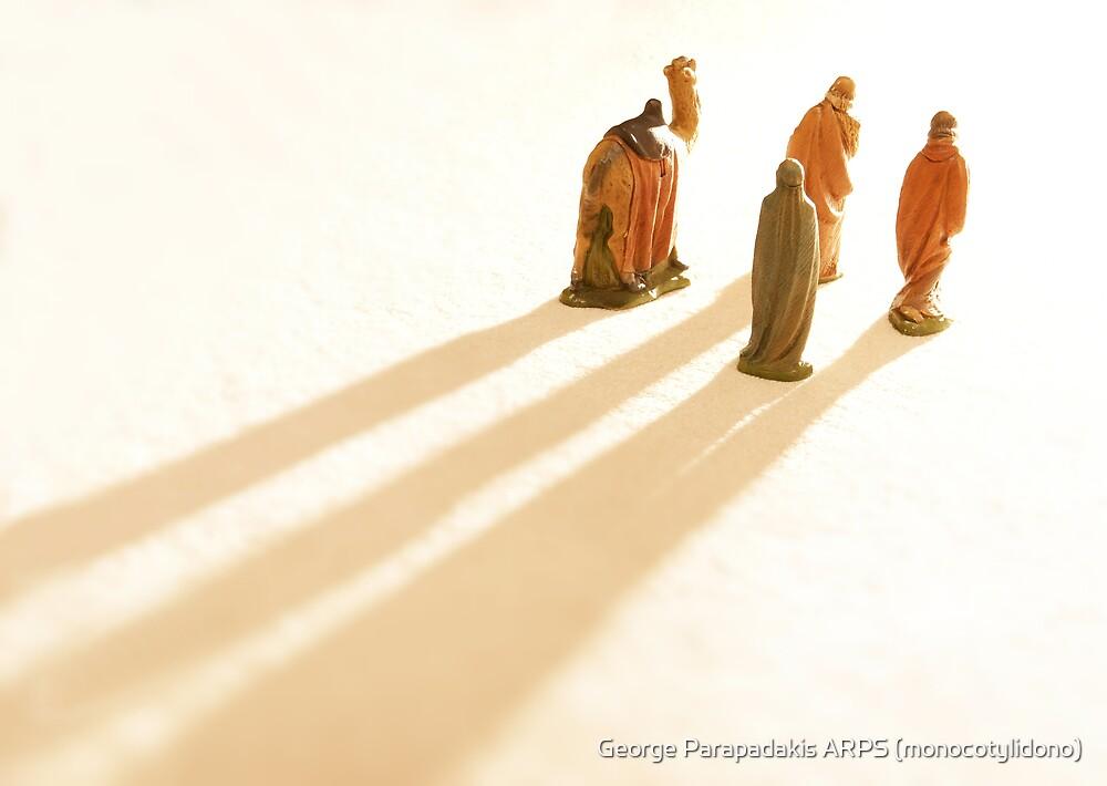 Guided by the light by George Parapadakis ARPS (monocotylidono)