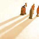 Guided by the light by George Parapadakis (monocotylidono)