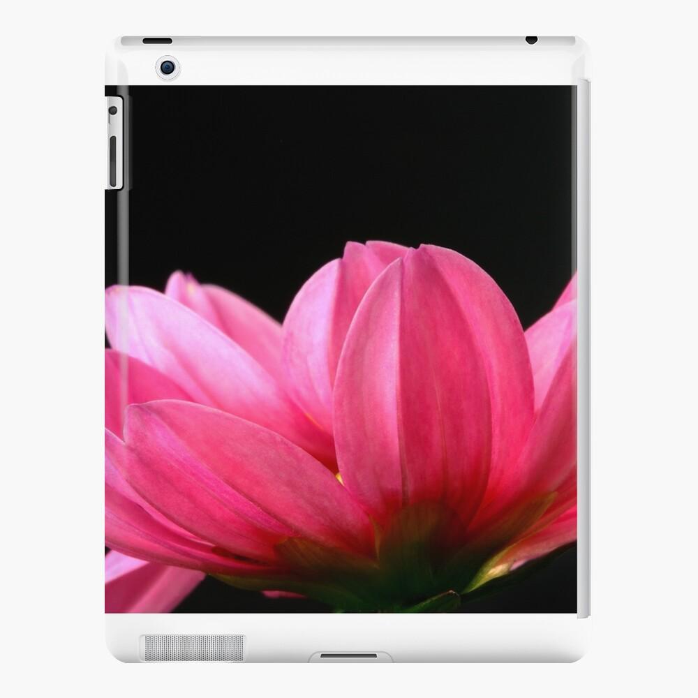 dalia Funda y vinilo para iPad