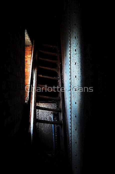 """""""Life is like a ladder. Each step is either up or down."""" by Charlotte Jeans"""