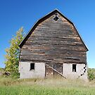 Barn in Bayfield by Shelby  Stalnaker Bortone
