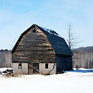 Barn in Winter by Shelby  Stalnaker Bortone