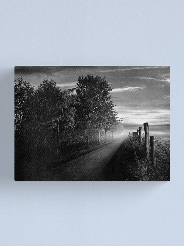 Alternate view of Path in the evening Canvas Print
