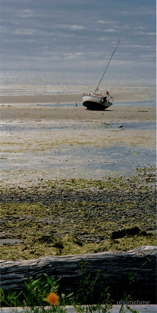 Low tide by ubumebme