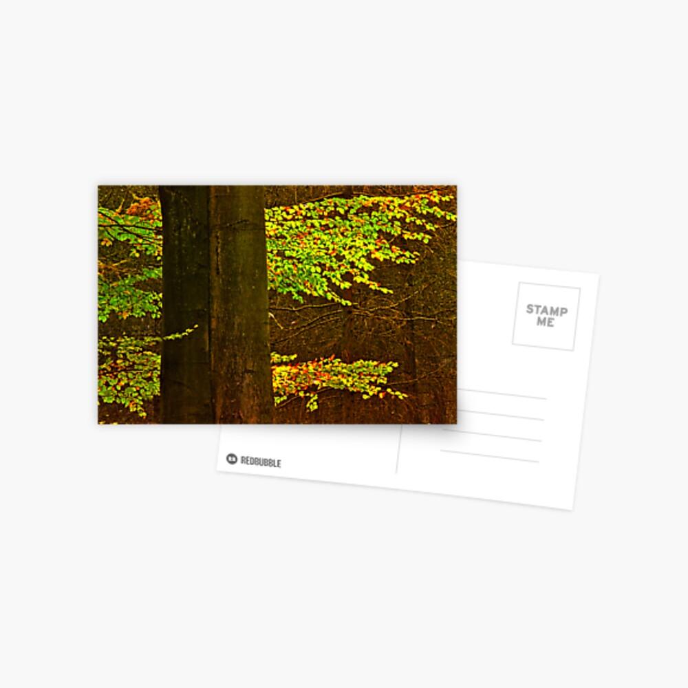 leafs Postcard