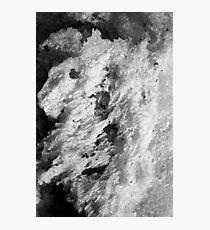 Salt Photographic Print