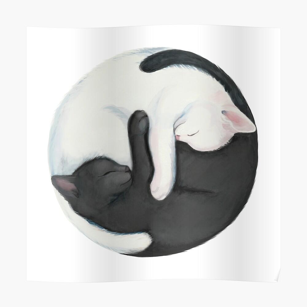 Gatos que balancean de Yin Yang Póster