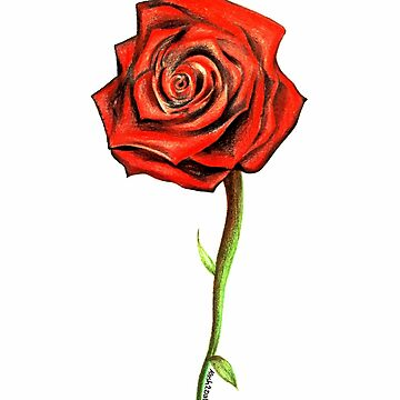 Red Rose by Kash by kash2dawizzle