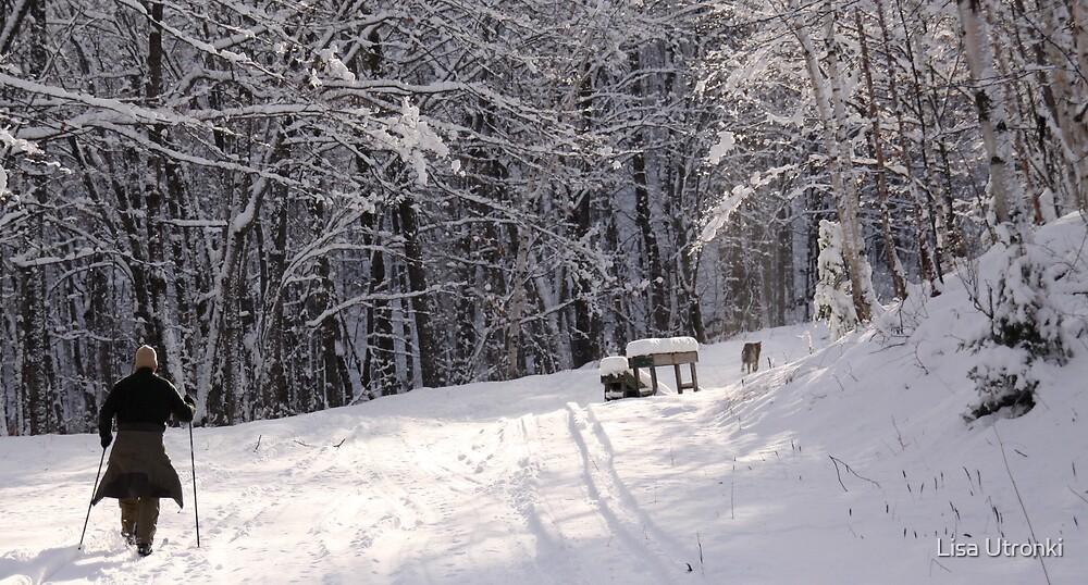 winter bliss by Lisa Utronki