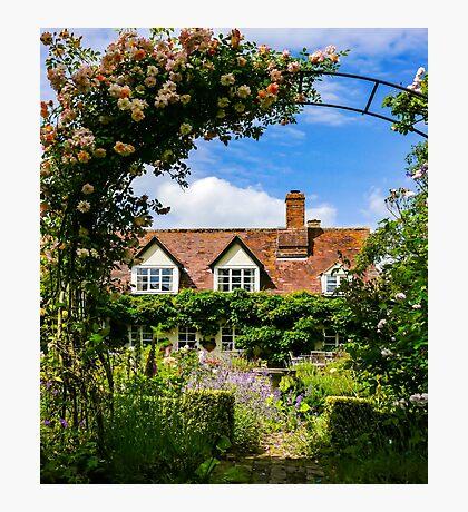 Cottage garden. v2 Photographic Print