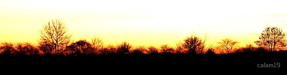 evening edge by calam19