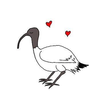 Ibis love by wanungara