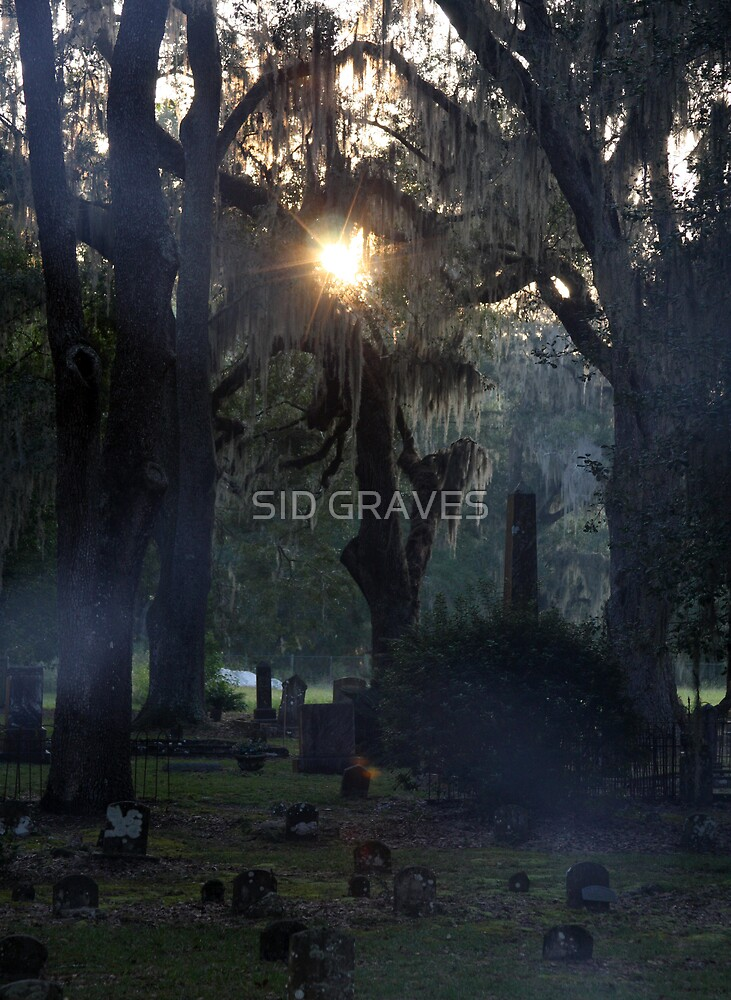 MORNING BLUR by SID GRAVES