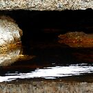 Reflections Bicheno by Shelley Heath