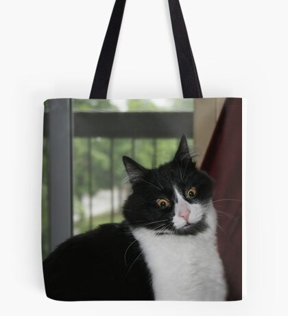 My Crazy Cat Looking at My Mother In Law  Tote Bag