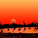 SUNSET WITH GIRAFFES by Michael Sheridan