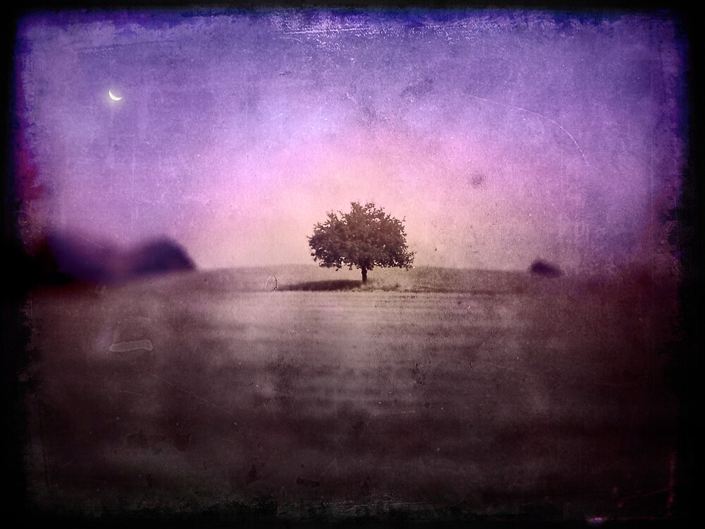 The Dark Field by JanuarySun