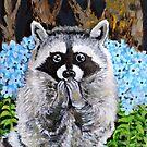 Mischief the Raccoon  by Amanda  Shelton