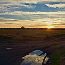 Fields and Sunset by Barbara  Brown