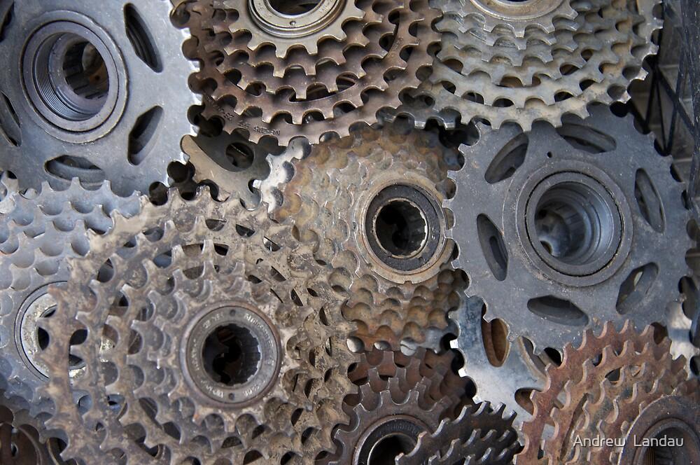Gears by Andrew  Landau