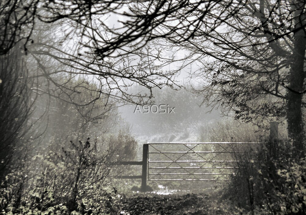 Morning Mist by A90Six
