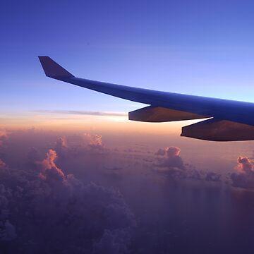 Flying High by talej