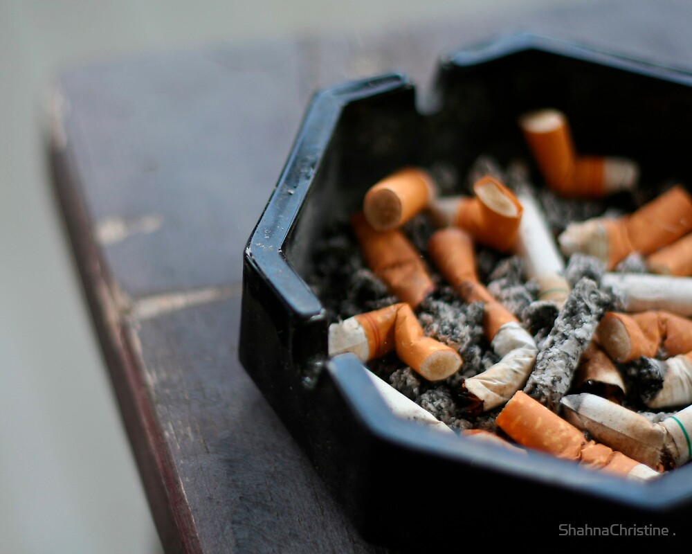 Ashtray by ShahnaChristine .