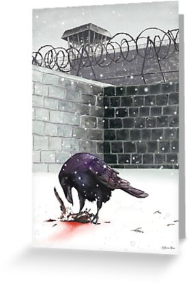 Crow, Bloody Snow by Jessica Bone